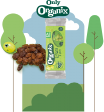 Organix Raisins Mini Boxes 60 units per case