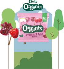 Organix Raspberry & Apple Moos 50 x 12g